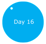 Day16